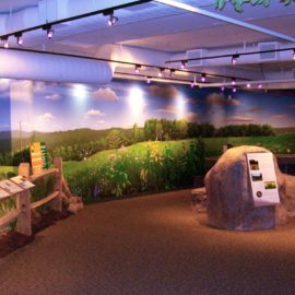 Science Museum Diorama Mural was painted in Science Center in New Jersey by Artist Charles C. Clear III of Ocean State Art