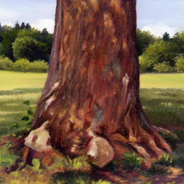 """Sycamore Tree Study Painting, 12″ x 16"""", Oil on Canvas, Chase Farm, Lincoln, Rhode Island, by Artist Charles C. Clear III"""